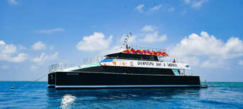 Great Barrier Reef Dreamtime Cruise with Indigenous Sea Rangers Thumbnail 5