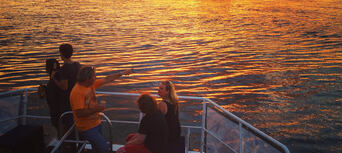Phillip Island Sunset Cruise Thumbnail 3