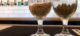 Sunshine Coast Hinterland Craft Beer Tour Thumbnail 4
