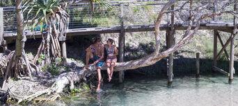 Fraser Island 2 Day Tour from Rainbow Beach Thumbnail 3