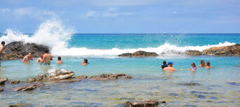 Fraser Island 2 Day Tour from Rainbow Beach Thumbnail 5