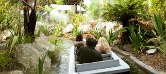 Rotorua Rainbow Springs Nature Park Day Pass Thumbnail 4