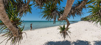 Lady Musgrave Island Day Trip from Bundaberg Thumbnail 5