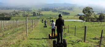 Yarra Valley Lunch and Segway Vineyard Tour Thumbnail 2