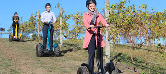 Yarra Valley Lunch and Segway Vineyard Tour Thumbnail 3