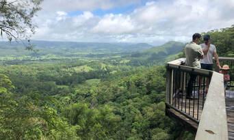 Sunshine Coast Hinterland Rainforest and Montville Village Tour Thumbnail 3