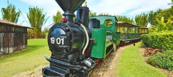 Sunshine Coast Hinterland Rainforest and Montville Village Tour Thumbnail 2