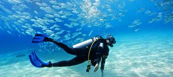 Cook Island Scuba Diving Tour Thumbnail 2