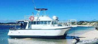 Cook Island Scuba Diving Tour Thumbnail 6