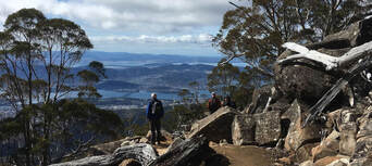 kunanyi Mt Wellington Explorer Bus 2 Hour Return Tour Thumbnail 6