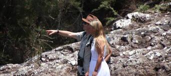 Minyon Waterfall Rainforest Tour from Byron Bay Thumbnail 2