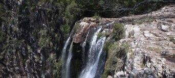 Minyon Waterfall Rainforest Tour from Byron Bay Thumbnail 3