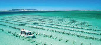 Coffin Bay Day Tour from Port Lincoln including Wine Tasting and Gourmet Lunch Thumbnail 1