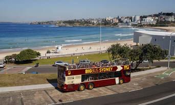 Sydney And Bondi Hop On Hop Off Bus Tour + 4 Famous Attractions Thumbnail 5