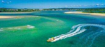 Noosa Dolphin Spotting Cruise Thumbnail 2