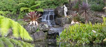Maleny Botanic Gardens Aviary Tour Thumbnail 6