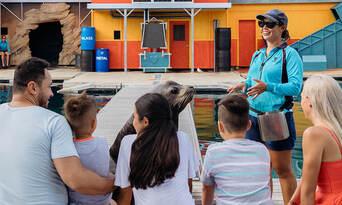 Sea World Seal Encounter Thumbnail 2