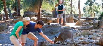 Taronga Zoo Sydney General Admission Thumbnail 4