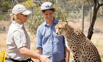 Cheetah Experience at Monarto Safari Park Thumbnail 4