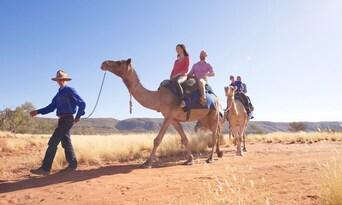 Alice Springs Sunset Camel Ride Thumbnail 6
