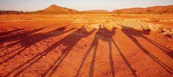 Alice Springs Sunset Camel Ride Thumbnail 2