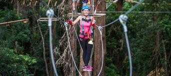 Sunshine Coast Treetop Challenge Thumbnail 1