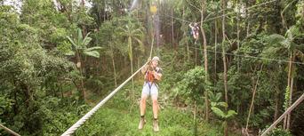 Sunshine Coast Treetop Challenge Thumbnail 2