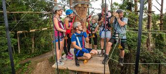 Sunshine Coast Treetop Challenge Thumbnail 3