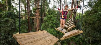 Sunshine Coast Treetop Challenge Thumbnail 5
