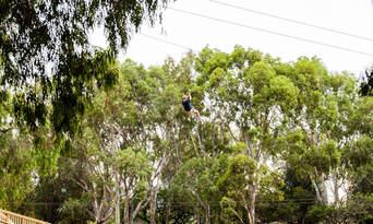Adelaide TreeClimb Grand Course Thumbnail 4