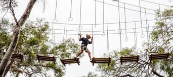 Adelaide TreeClimb Thumbnail 3