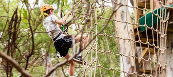 Adelaide TreeClimb Thumbnail 5