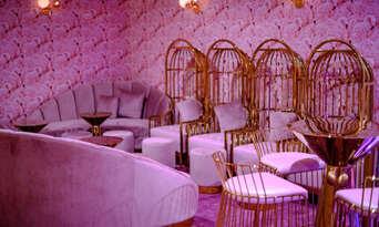 The Pink Flamingo Suave Show Thumbnail 4