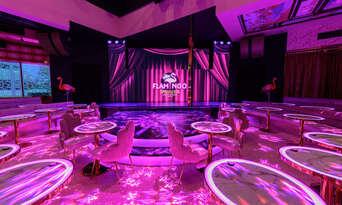 The Pink Flamingo Suave Show Thumbnail 6