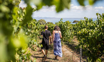 Mornington and Bellarine Peninsula's Food and Wine Tour including Winery Lunch Thumbnail 1