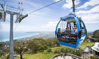 Mornington and Bellarine Peninsula's Sightseeing Tour including Sailing Cruise and Lunch Thumbnail 5