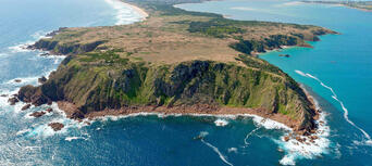Phillip Island Cowes, Seal Rocks, Penguins & Grand Prix Circuit Helicopter Flight Thumbnail 6