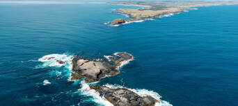 Phillip Island Cowes, Seal Rocks, Penguins & Grand Prix Circuit Helicopter Flight Thumbnail 1