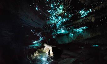 Waitomo Glowworm Caves Eco Tour Thumbnail 4