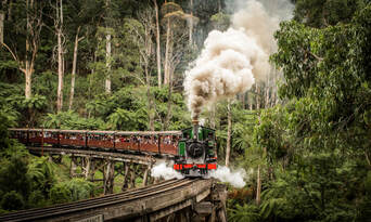 Puffing Billy Lakeside to Gembrook Return Tickets Thumbnail 2