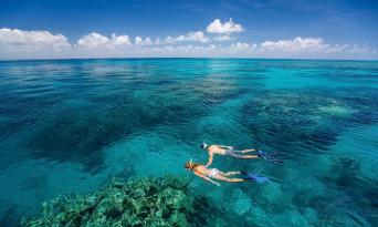 Great Barrier Reef + Green Island 1 Day Tour Combo Thumbnail 1