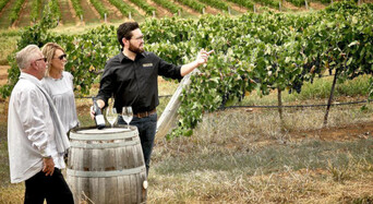 The Brokenwood Journey - Behind the Scenes Wine Experience Thumbnail 1