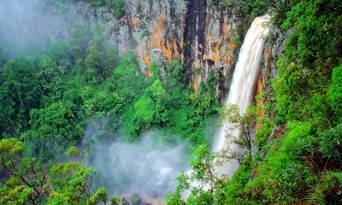 Natural Bridge Springbrook And Gold Coast Tour From Brisbane Thumbnail 4