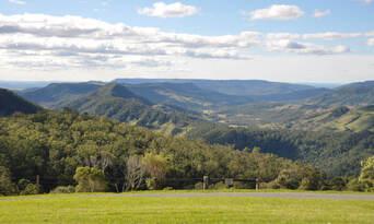 Tamborine Mountain And Gold Coast Tour From Brisbane Thumbnail 1