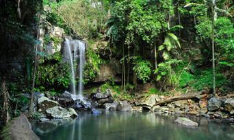 Gold Coast Hinterland Tour From Brisbane Thumbnail 1
