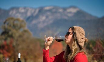Melbourne Feathertop Winery Tour Thumbnail 3
