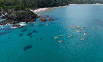 Byron Bay Dolphin Kayaking Tour Thumbnail 4
