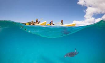 Byron Bay Dolphin Kayaking Tour Thumbnail 1