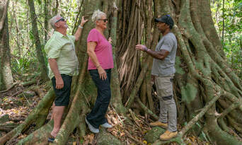 Full Day Private Cultural Experience Of The Port Douglas Daintree Region Thumbnail 1