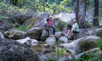 Full Day Private Cultural Experience Of The Port Douglas Daintree Region Thumbnail 4